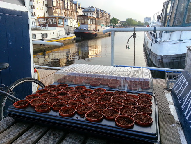 Houseboat allotment